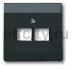 Плата центральная (накладка) для 2-постовой телекоммуникационной розетки 0214, 0215, 0217, 0218, с полем для надписи, серия solo/future, цвет антрацит