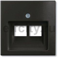 Плата центральная (накладка) для 2-постовой телекоммуникационной розетки 0214, 0215, 0217, 0218, с полем для надписи, серия Basic 55 цвет chateau-black