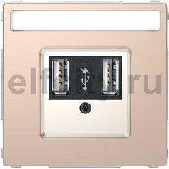Зарядное USB устройство , 2,1А (2*1,05), шампань