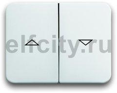 Клавиша для механизма выключателя жалюзи 2000/4 U и 2020/4 US, с маркировкой, серия alpha nea, цвет белый глянцевый