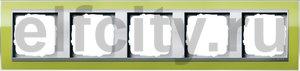 Рамка 5 постов, для горизонтального/вертикального монтажа, пластик прозрачный зеленый-алюминий