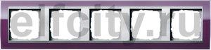 Рамка 5 постов, для горизонтального/вертикального монтажа, пластик прозрачный темно-фиолетовый-алюминий