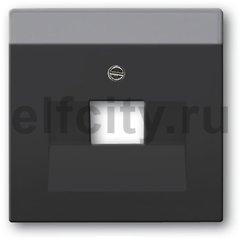 Плата центральная (накладка) для 1 постовой телекоммуникационной розетки 0213, 0216, с полем для надписи, серия solo/future, цвет антрацит
