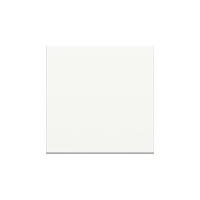 Клавиша Unica Studio Color (белый)