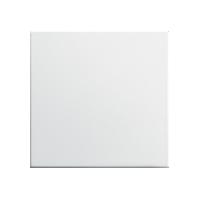 Клавиша E2 (пластик белый матовый)