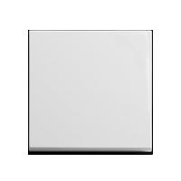 Клавиша Standard 55 (пластик белый матовый)