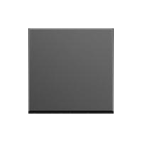 Клавиша Esprit Linoleum-Multiplex (пластик антрацит)