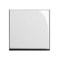 Клавиша Standard 55 (пластик белый глянцевый)
